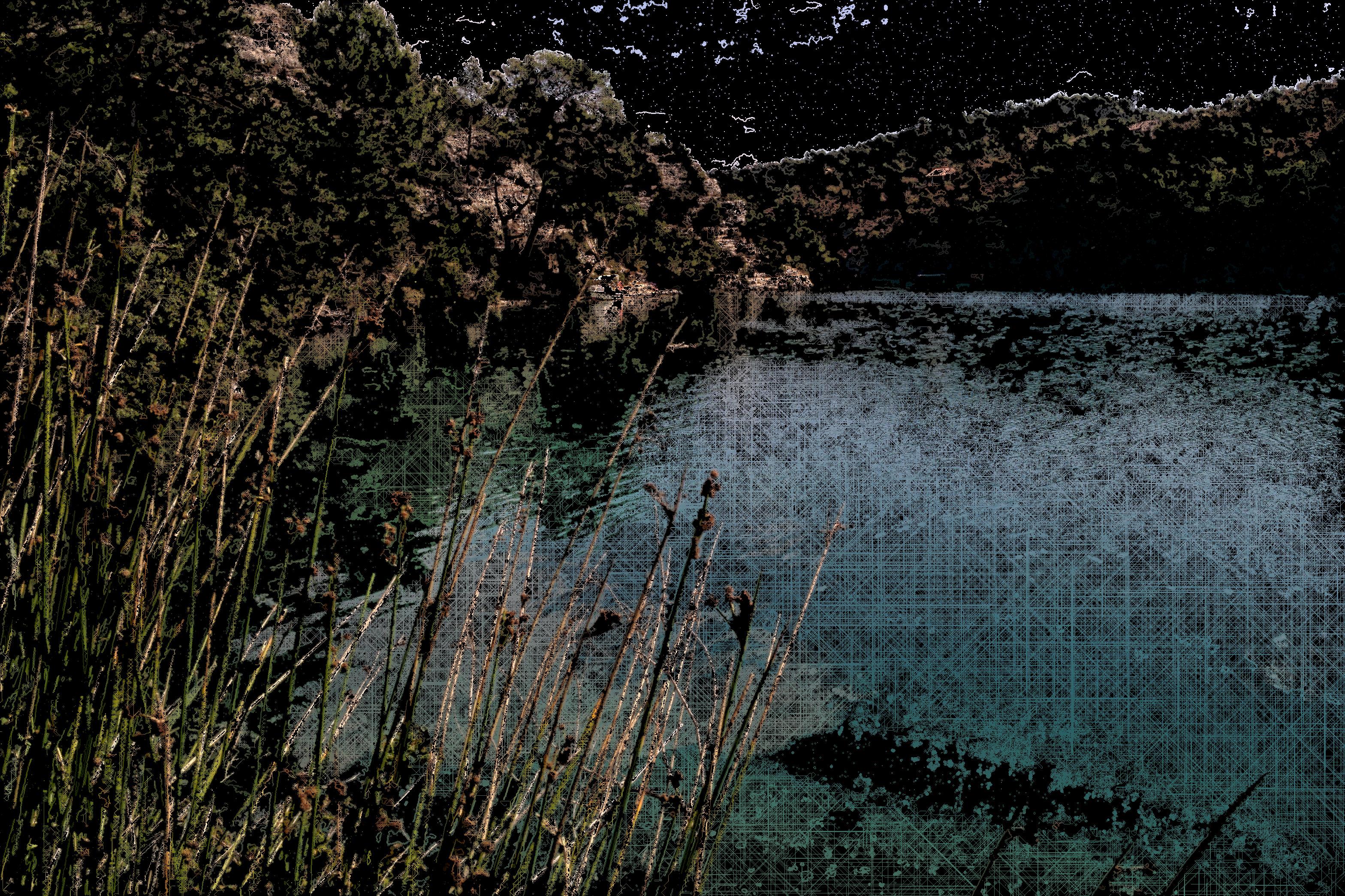 125 - Une crique du lac d'Esparron. FlowAutomaton 20983 agents 475 itérations. 2021.